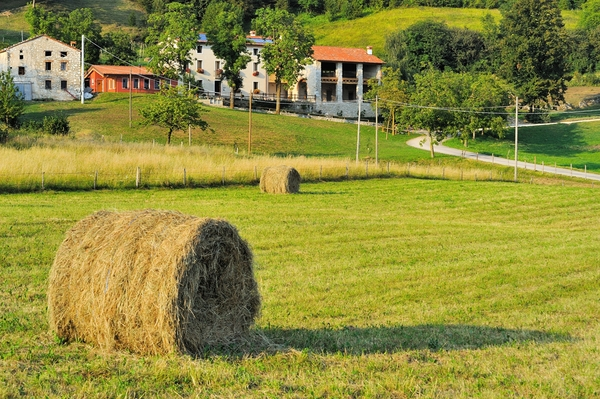 Foto dintorni case vacanza San Gaetano Schio – 7